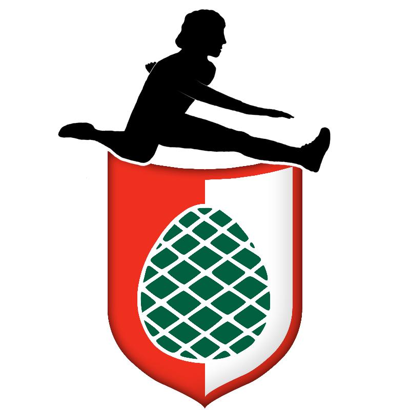 Logo LG Augsburg